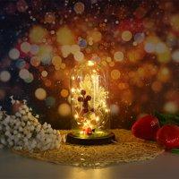 Tuscom Romantic Immortal Copper Wire Lamp Christmas Micro Landscape Decoration