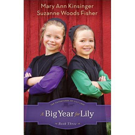 Big Year for Lily, A (The Adventures of Lily Lapp Book #3) - eBook (The Big Year Book)
