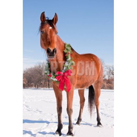 - Bay Arabian Horse in Snow with a Christmas Wreath around His Neck - Concept of Gift Horse Print Wall Art By Sari ONeal