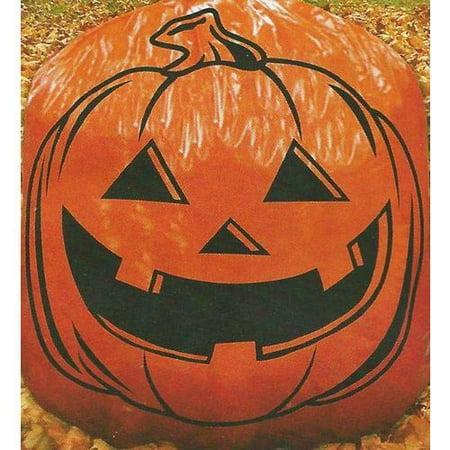 "Halloween Giant Pumpkin Lawn Bag 36""x60"" - image 1 of 3"