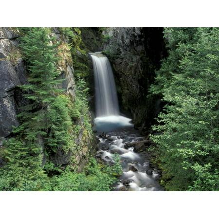 Waterfall and Lush Foliage, Mt. Rainier National Park, Washington, USA Print Wall Art By Gavriel