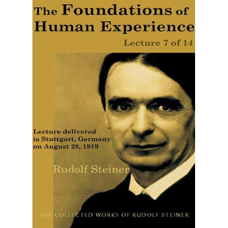 The Foundations of Human Experience: Lecture 7 of 14 - (Wright Foundation For The Realization Of Human Potential)