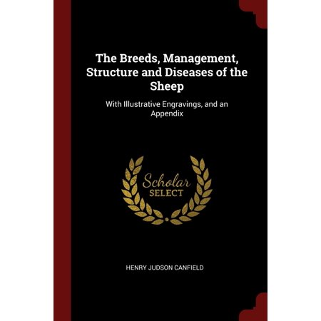 The Breeds, Management, Structure and Diseases of the Sheep : With Illustrative Engravings, and an Appendix Breed Of Sheep