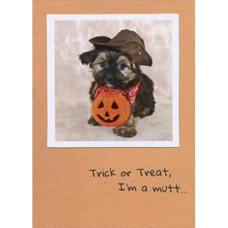 Greeting Cards For Halloween Sayings (Recycled Paper Greetings Trick or Treat Mutt Funny Halloween)