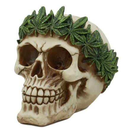 Ebros Pot Head Skull Statue 6