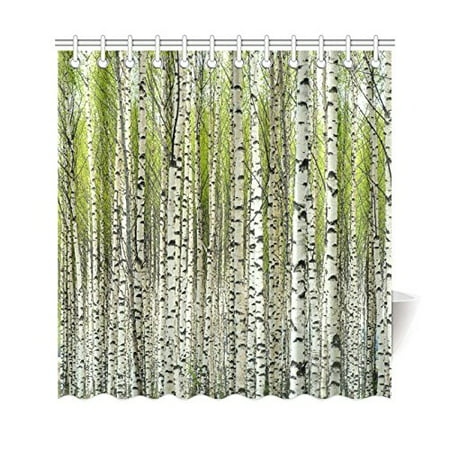 GCKG Home Bath Decor Fabric Green Birch Tree Shower Curtain Hooks 66x72 Inches Bare