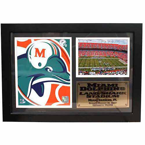 NFL 12x18 Photo Stat Frame, Miami Dolphins Logo