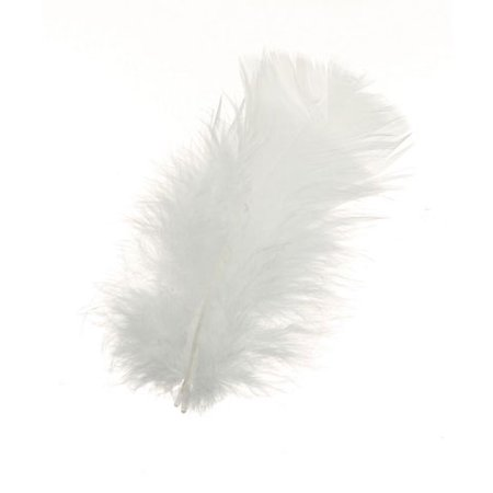 All Purpose Feathers - White - 14 grams (Hobby Lobby Feathers)