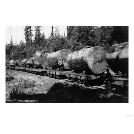 Redwood Lumber (Among the Redwoods Lumber Train - California Print Wall Art By Lantern Press )