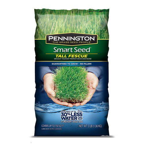 Pennington Smart Seed , Tall Fescue Blend Grass Seed, 7 lbs