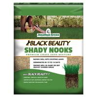 Jonathan Green Black Beauty Shady Nooks 11957 Grass Seed, 3 lb Bag (Shady Nooks Grass Seed)