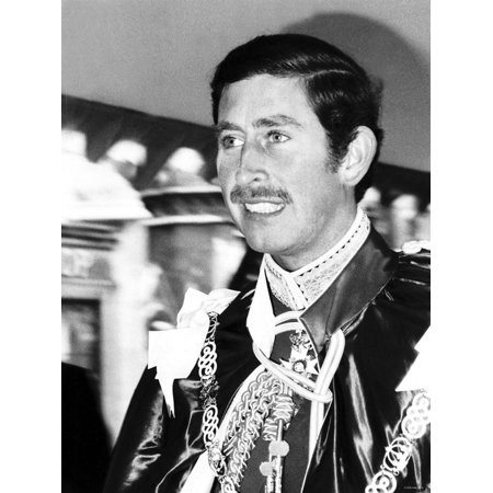 Prince Charles Being Installed as Great Master of the Order of the Bath May 1975 Print Wall (This Product May Not Be Installed Hyper V)