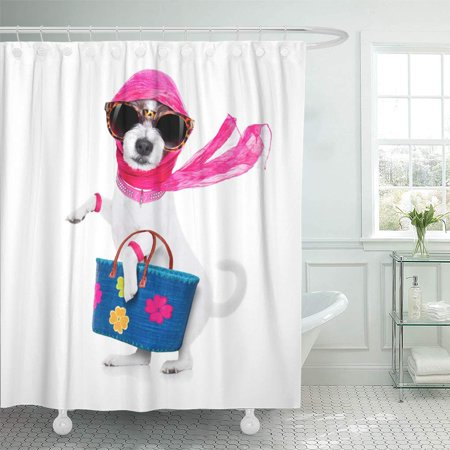 KSADK Pet Crazy and Silly Terrier Dog Diva Lady with Shopping White Animal Basket Buy Car Shower Curtain Bath Curtain 66x72 inch (Diva Shower Curtain)