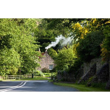 A Road Surrounded By Trees Leading To A House Northumberland England Posterprint