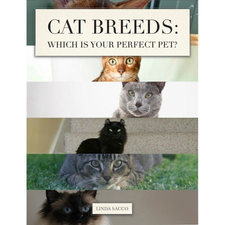 Cat Breeds: Which is Your Perfect Pet? - eBook