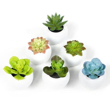 CBD 6 Pcs Fake Succulents Faux Succulent Plants Artificial (Artificial Succulent)
