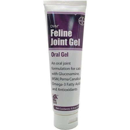 DVM Feline Joint Gel 5 oz.