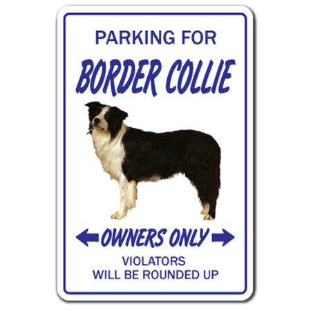 Border Collie [3 Pack] of Vinyl Decal Stickers   Indoor/Outdoor   Funny decoration for Laptop, Car, Garage , Bedroom, Offices   SignMission