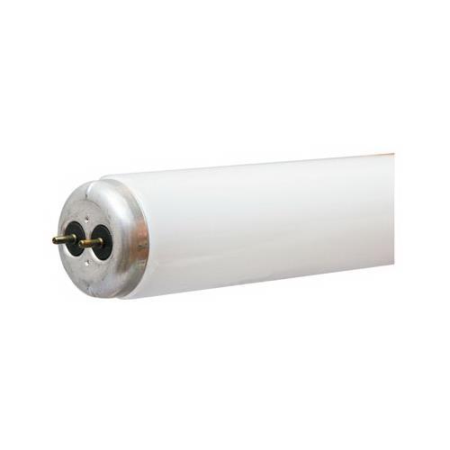 GE 66650 Utility Fluorescent Light Bulb, Cool White, 40-Watt