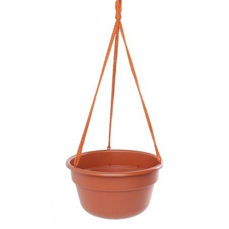 Bloem Dura Cotta Hanging Basket 12