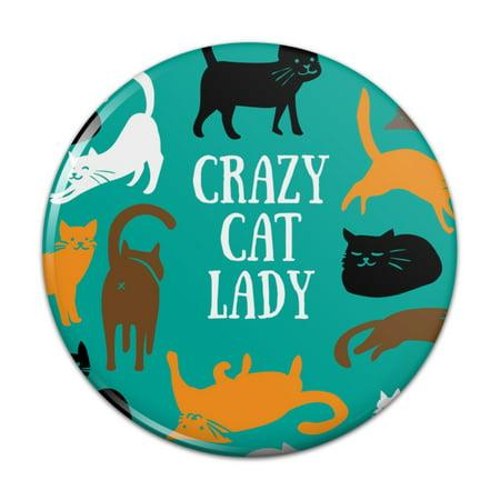 Crazy Cat Lady Teal Orange Black Brown Pinback Button Pin Badge - 1