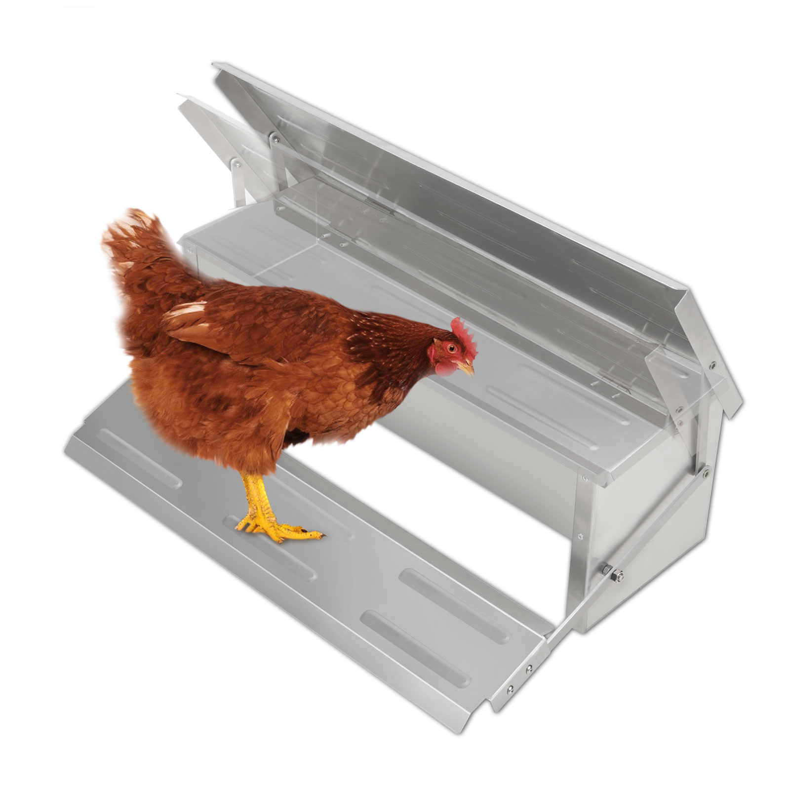 Voilamart Automatic Chicken Chook Poultry Feeder, 11 Poun...