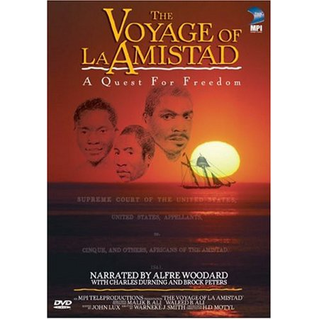 Image of The Voyage of La Amistad: A Quest for Freedom