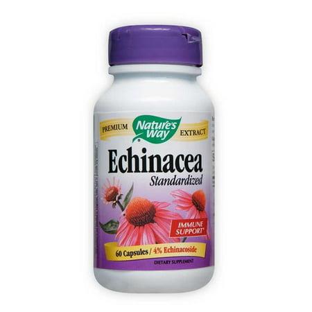 Echinacea Angustifolia Standardized Extract Nature
