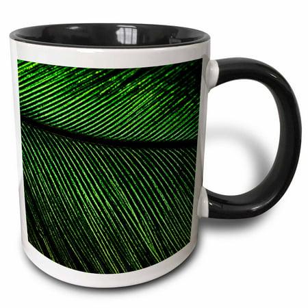 3dRose Resplendent Quetzal bird, Costa Rica - SA22 AMR0029 - Andres Morya Hinojosa - Two Tone Black Mug, 11-ounce