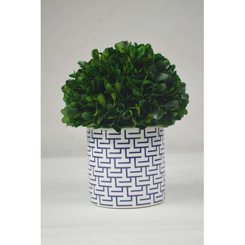GT DIRECT CORP Ball Ceramic Boxwood Topiary in Planter