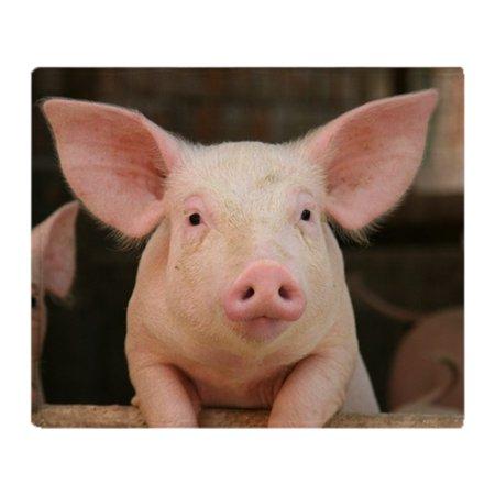 CafePress - Cute Pig - Soft Fleece Throw Blanket, 50