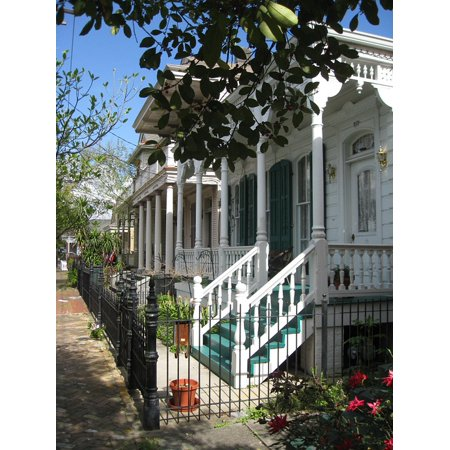 Canvas Print White Trees New Orleans Plantation Stairs House Stretched Canvas 10 x (New White House)
