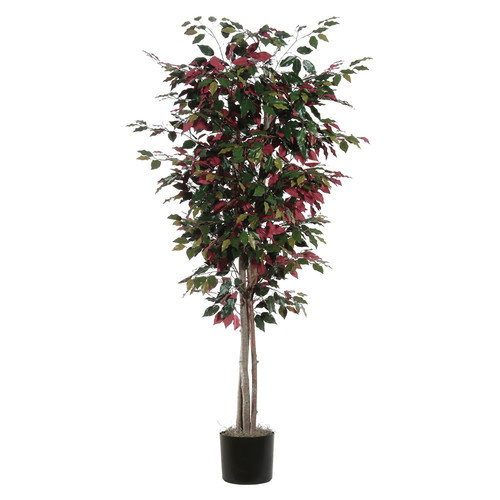 Vickerman Capensia Deluxe Tree in Pot