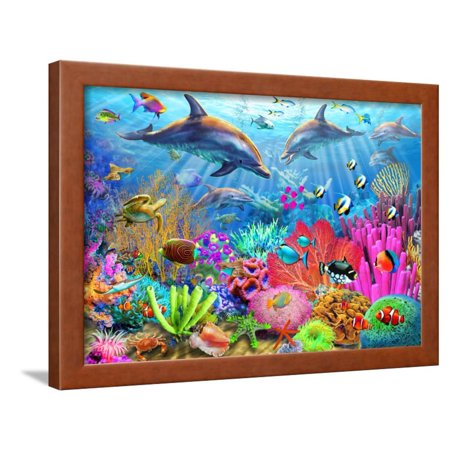 Dolphin Coral Reef Framed Print Wall Art By Adrian Chesterman