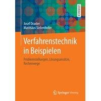 Verfahrenstechnik in Beispielen: Problemstellungen, Lösungsansätze, Rechenwege (Paperback)
