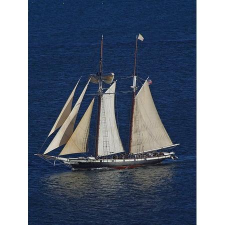 canvas print yacht ocean sailing vessel sail sea sailing boat stretched canvas 10 x