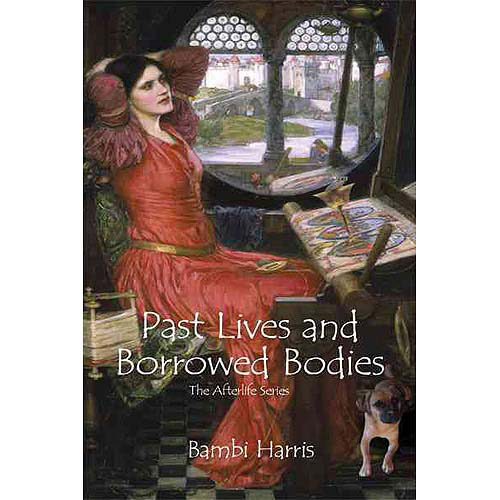 Past Lives and Borrowed Bodies: The Afterlife Series