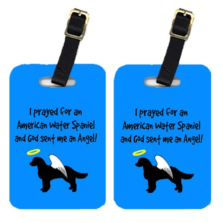 Pair of 2 American Water Spaniel Luggage Tags