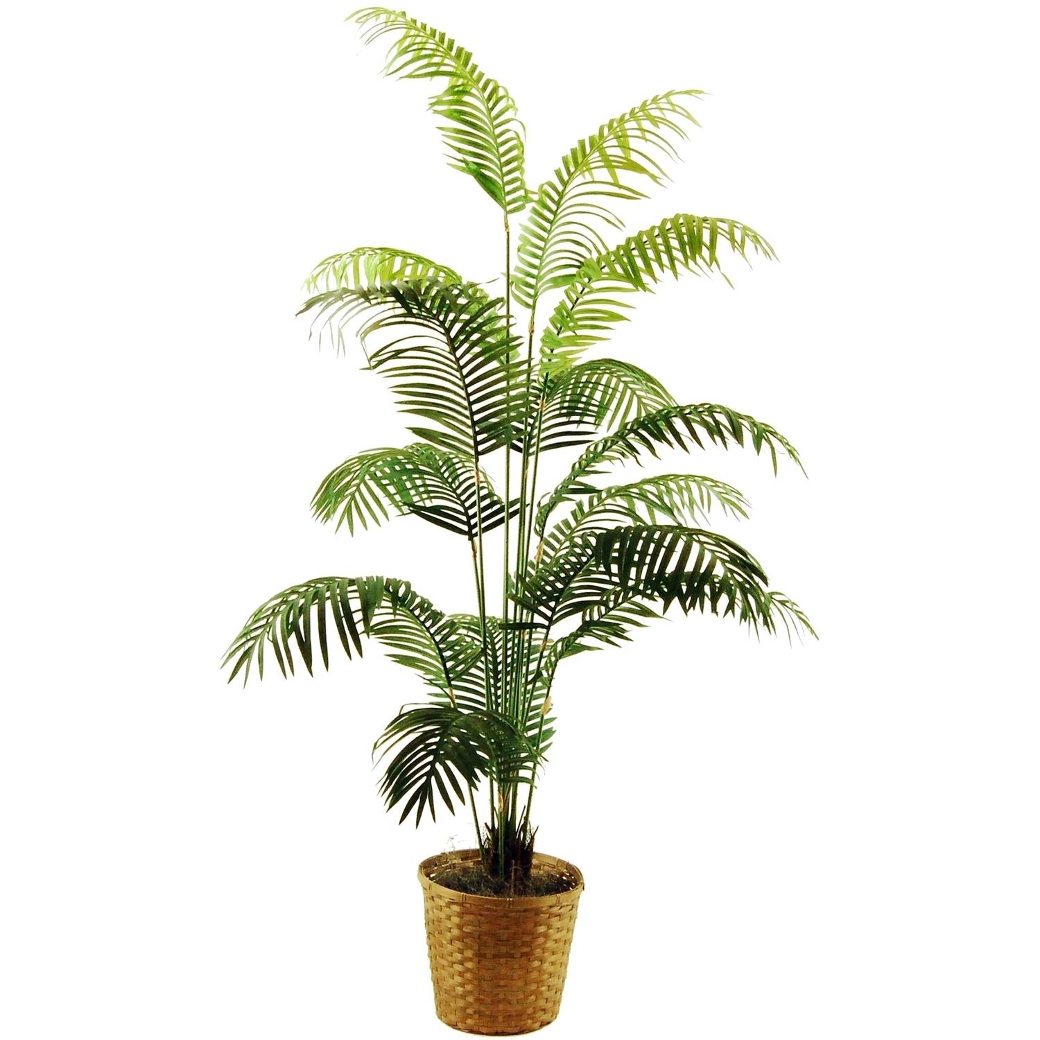 """72"""" Artificial Areca Palm in a Basket with Spanish Moss"""