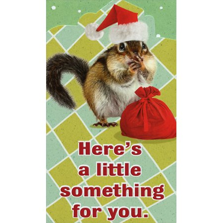 c3da71b0f0 Recycled Paper Greetings Squirrel In Santa Hat  Money   Gift Card Holder  Funny Christmas Card - Walmart.com
