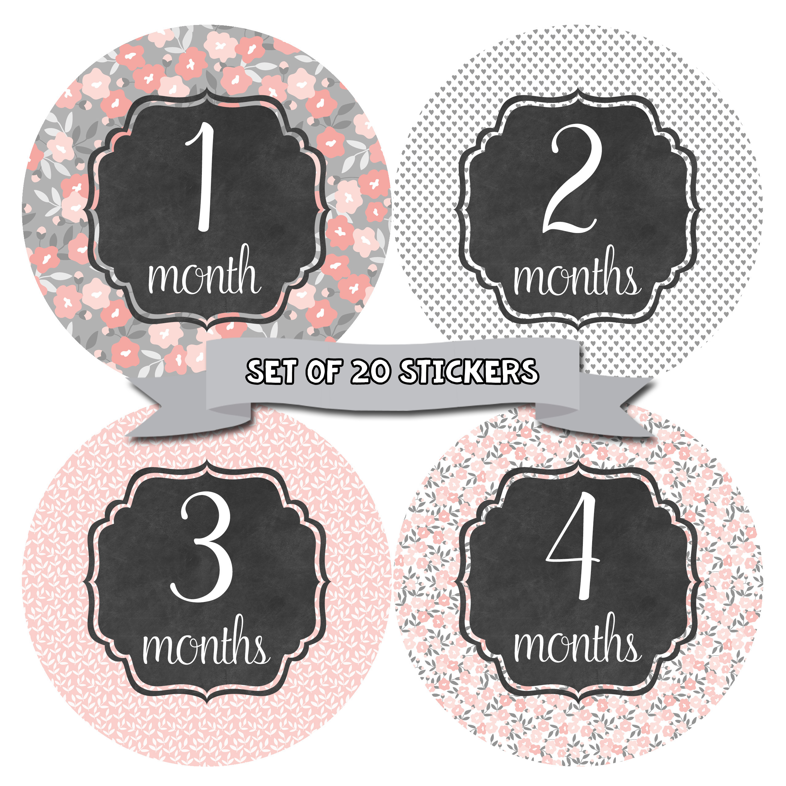 Baby Monthly Milestone Stickers - First Year Set of Baby Girl Month Stickers for Photo Keepsakes - Shower Gift - Set of 20 - Floral Shabby Chic