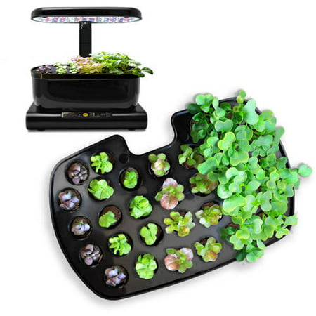 Miracle-Gro AeroGarden Seed Starting System for Harvest (Aerogarden Miracle Gro Bounty Seed Starting System Multi)