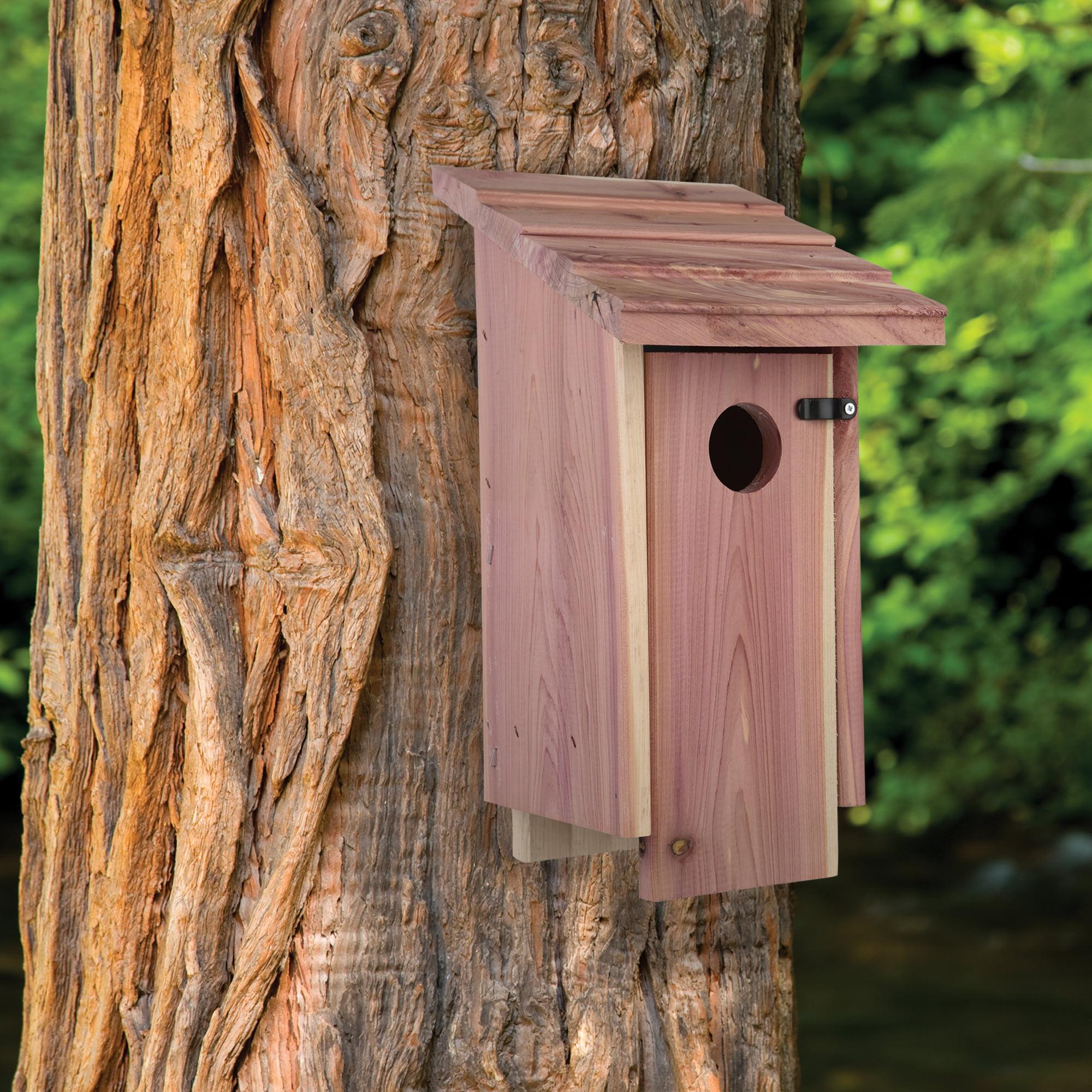 Amazing Pennington Cedar Bluebird Wild Bird House 1 Unit Download Free Architecture Designs Scobabritishbridgeorg