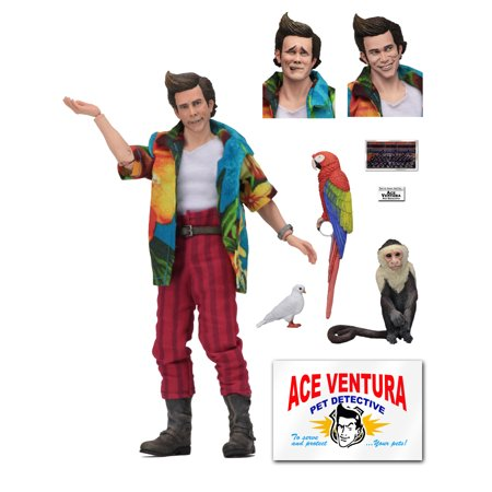 Ace Ventura: Pet Detective - 8