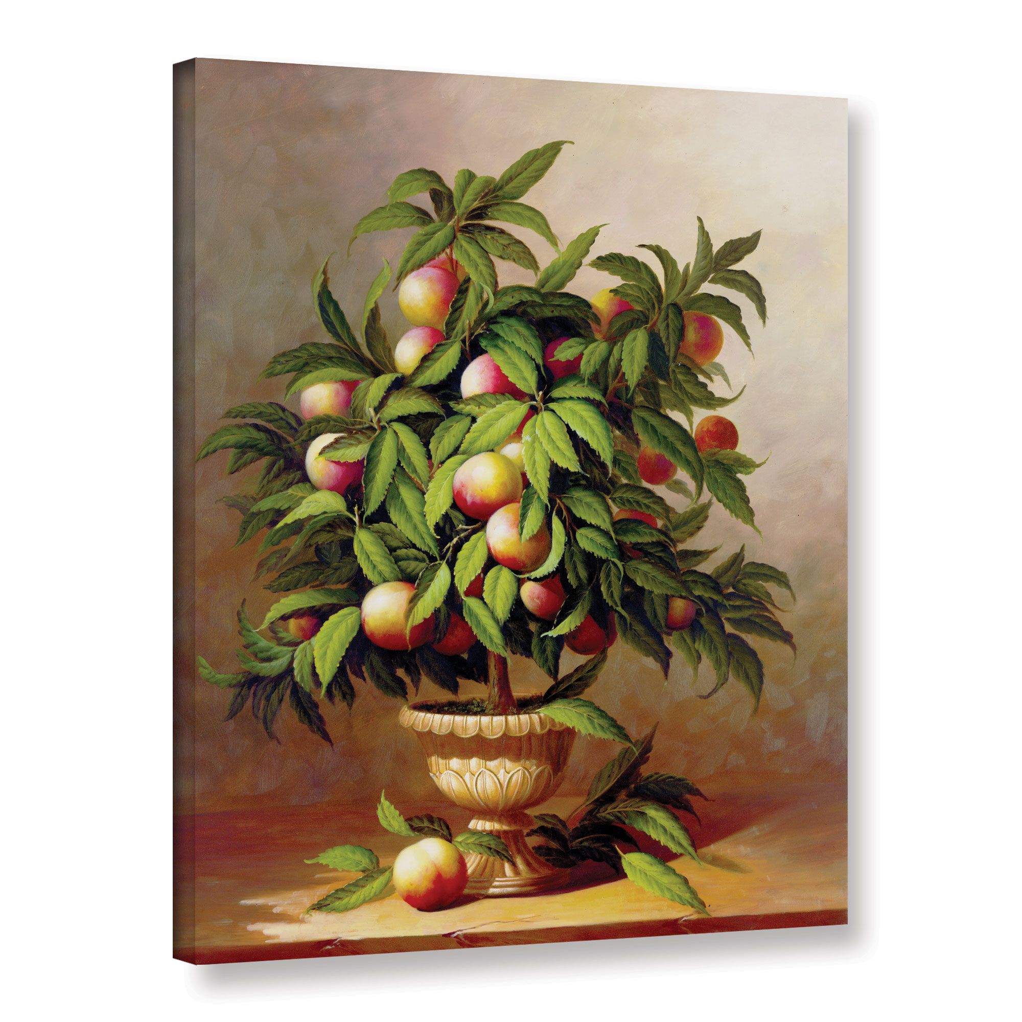 Potted Peach Tree