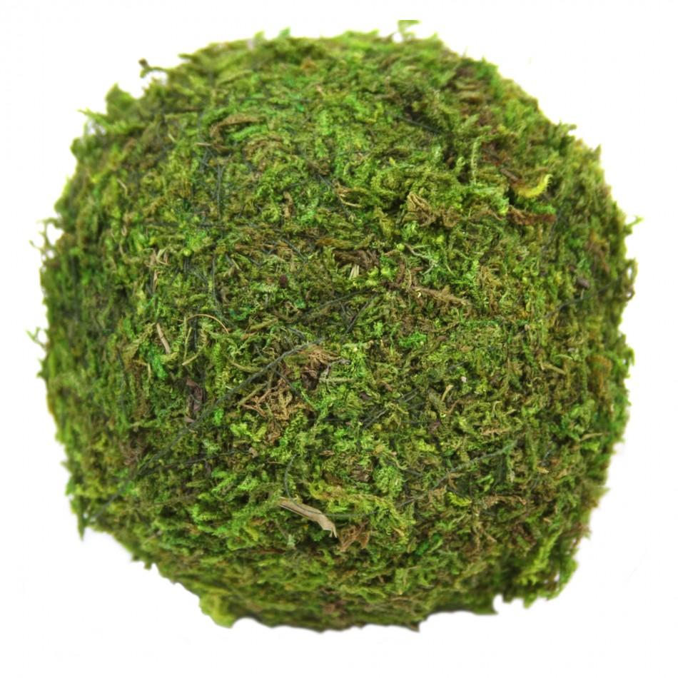 Koyal 12-Pack Green Moss Balls, 4-Inch