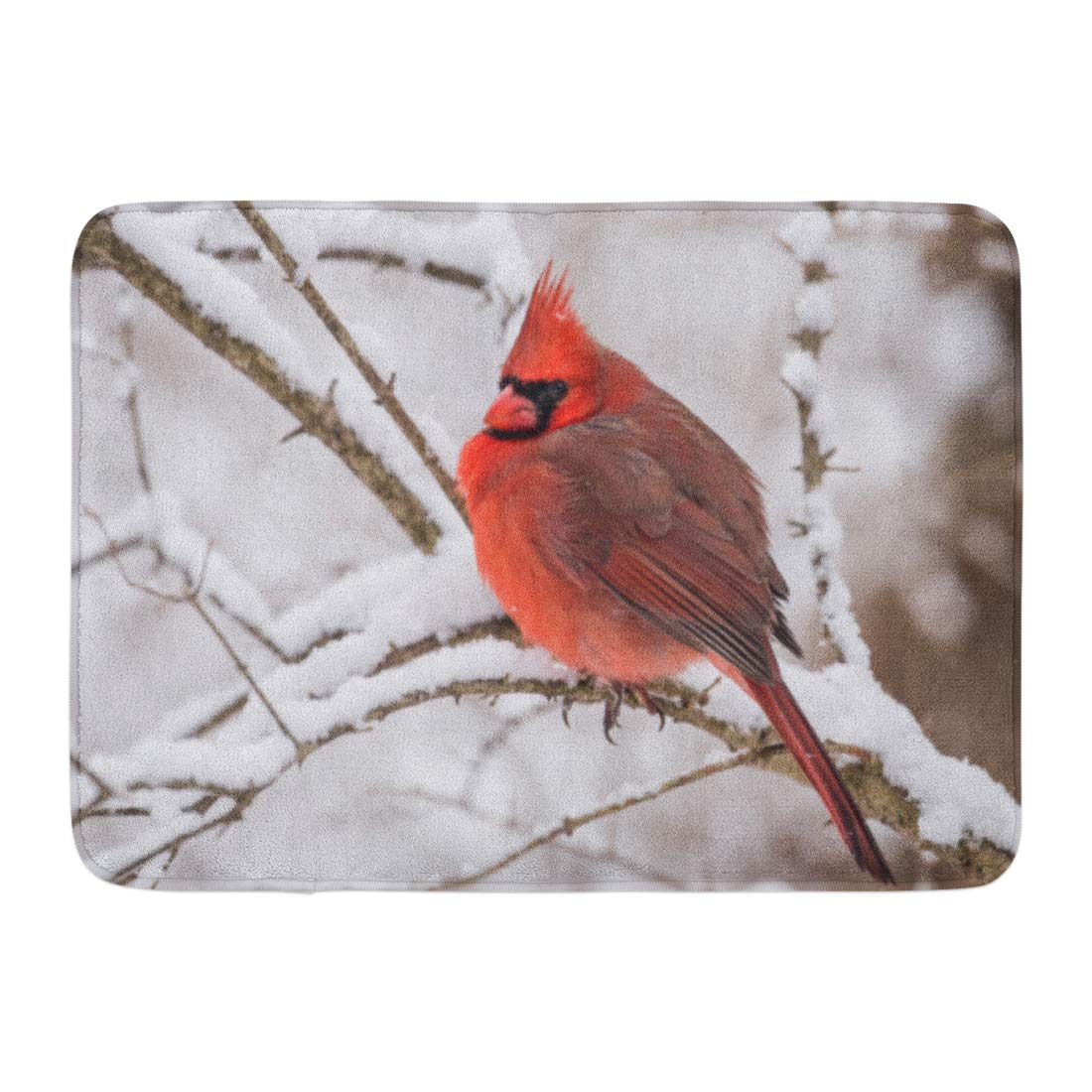 GODPOK Christmas Red Animal Northern Cardinal in The Snow White Bird Cold Rug Doormat Bath Mat 23.6x15.7 inch