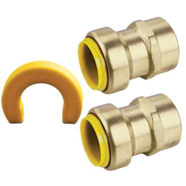 Webstone 26203WKIT 0.75 in. Lead Free Brass Water Heater Insert Kit