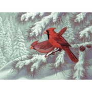 Royal Brush Adult Painting by Numbers Kit, Cardinals