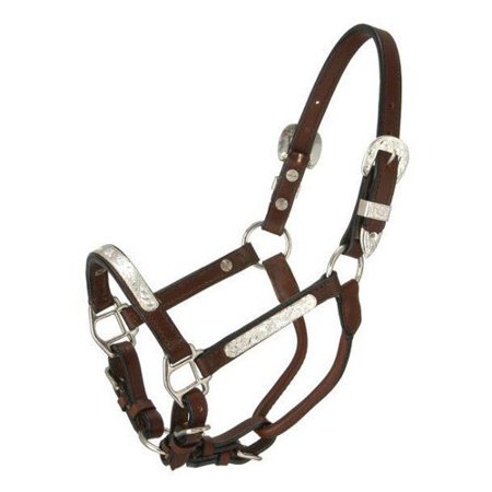 Miniature Show Halter (Royal King Miniature Silver Bar Show Halter)